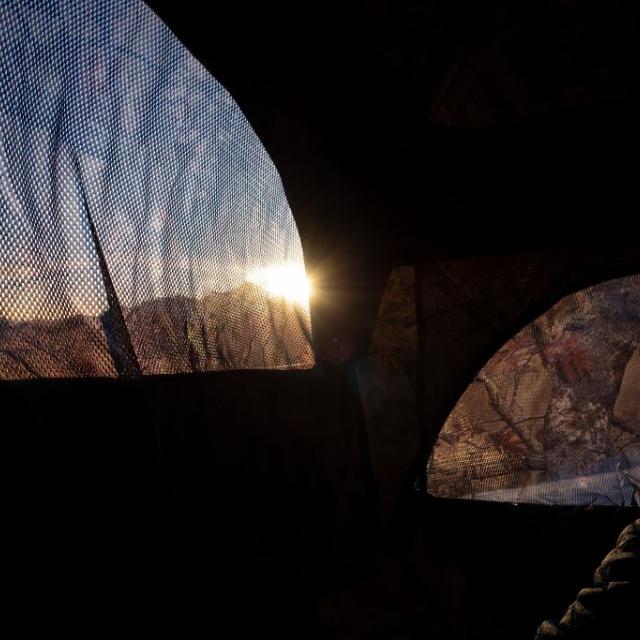 Opération capture et équipement GPS tétras lyre - avril-mai 2019 -photo T.Maillet  - Parc national des Ecrins