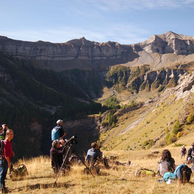 GSE LEmed Ibex - Parc national des Ecrins - OCt 2019 - photo R.Moine-PNE