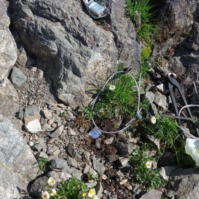 Des capteurs de lumière et de température installés en 2015 dans le sol au glacier carré - © C.Dentant - Parc national des Écrins