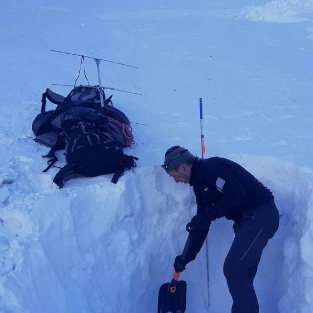 Bouquetin collier GPS retrouvé sous une avalanche-Valbonnais -janv 2020 © Parc national des Écrins