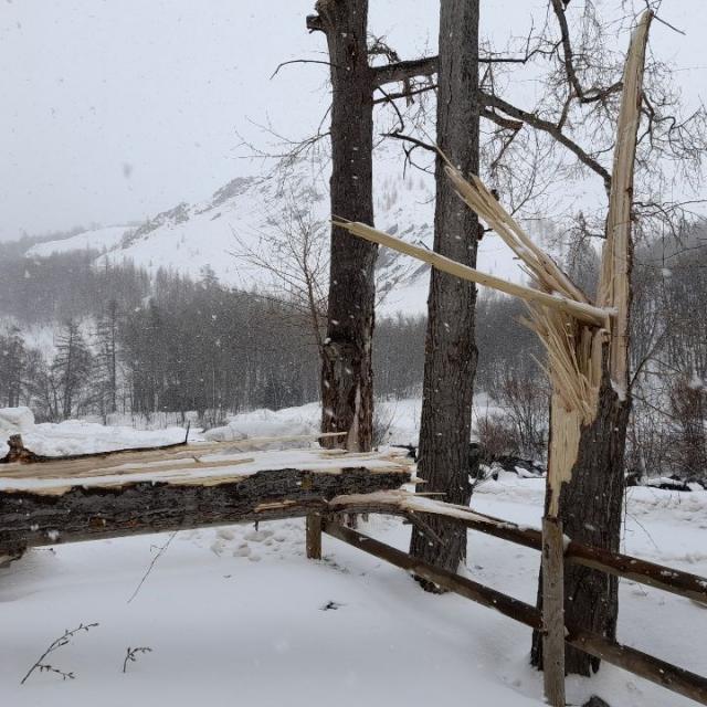 Avalanche à La Grave du 11/02/2021 - © A. Bello - PNE