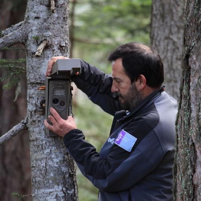 Instalación de trampas fotográficas en el valle de Rouanne - © M. Corail - PNE