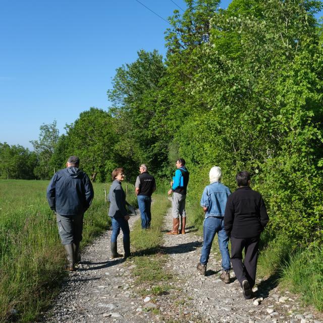 Concours d'agroforesterie : visite du jury - D. Vincent - PNE