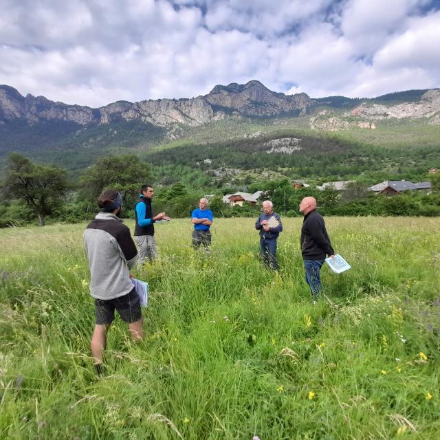 Concours des prairies fleuries : visite du jury - PNE