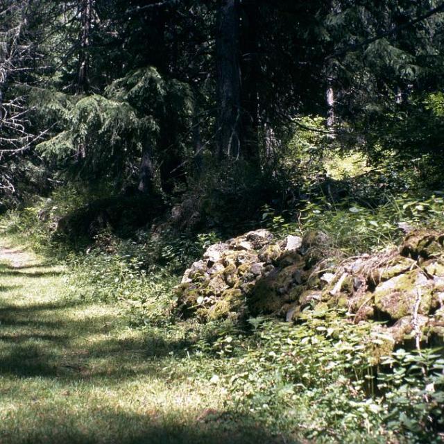 Vers Peyron Roux © Manuel Meester - Parc national des Ecrins