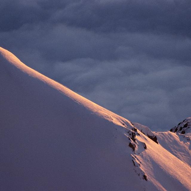 Soleil Boeuf ©Marc Corail - Parc national des Ecrins