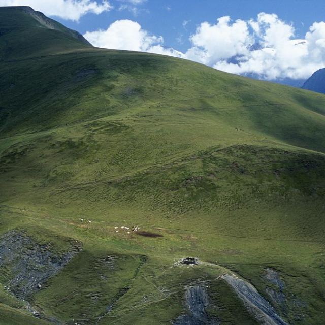 Alpage de la Citrière - Mizoën © Jean-Pierre Nicollet - Parc national des Ecrins