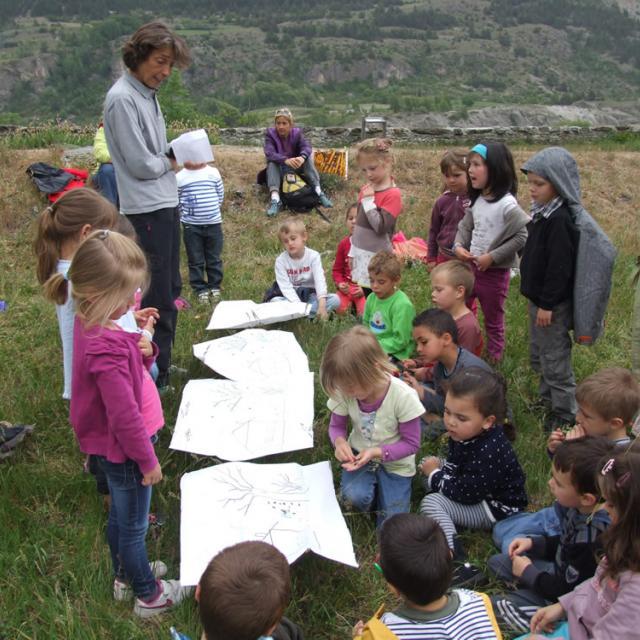 jeunes découvreurs des Ecrins