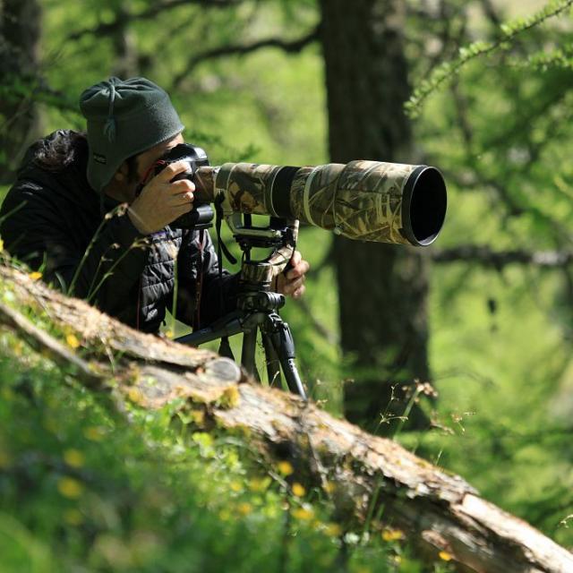 photographe naturaliste © M.Corail - Parc national des Ecrins