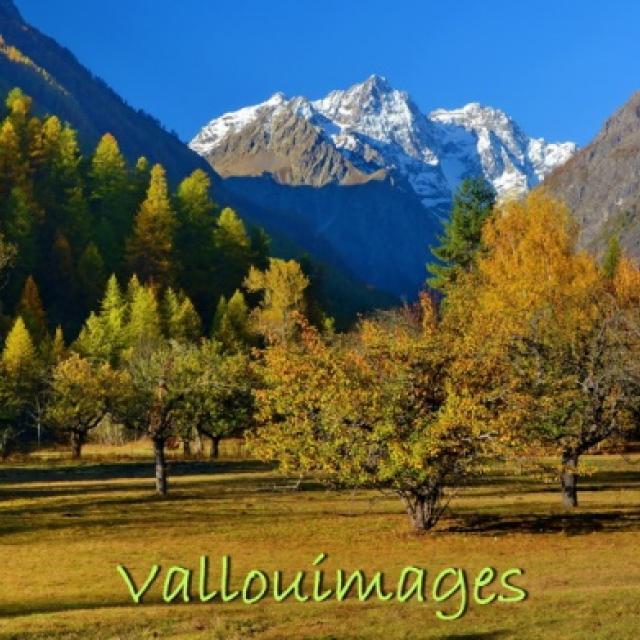 Vallouimages