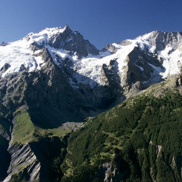 Le massif de la Meije vu du Signal de la Grave © Bernard Nicollet - Parc national des Ecrins