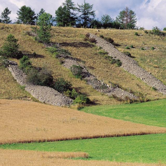Clapiers © Stéphane D'houwt - Parc national des Ecrins