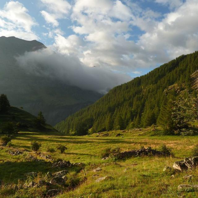 Dormillouse, l'Ardouin © Blandine Delenatte, Parc national des Ecrins.