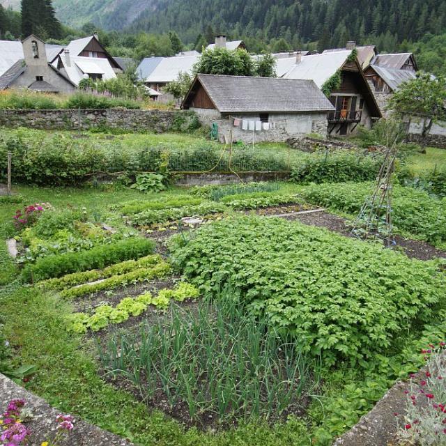 Un jardin à Valsenestre © Ludovic Imberdis, Parc national des Ecrins.