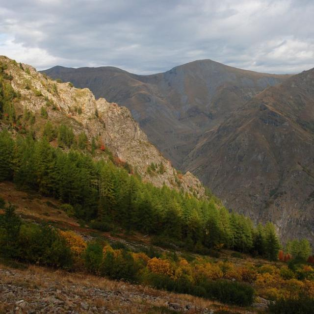 Valsenestre en automne © Bernard Nicollet, Parc national des Ecrins.