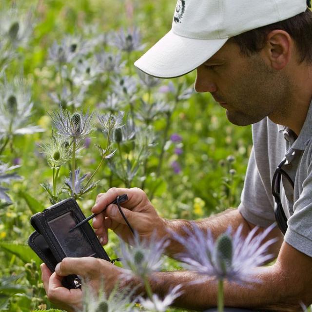 Saisie flore sur PDA ©Pascal Saulay - Parc national des Ecrins