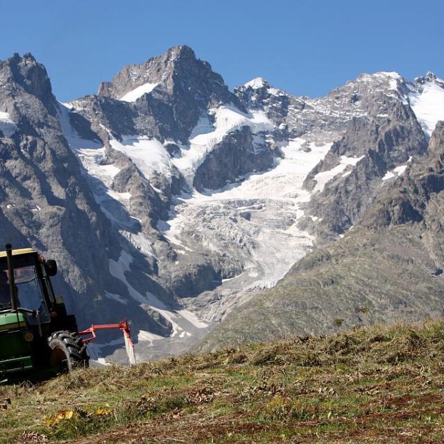 Fauche en altitude - La Grave - © Eric Vannard - Parc national des Ecrins