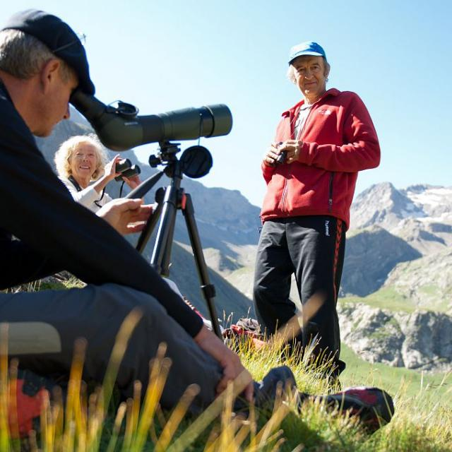 Garde-moniteur animant des sorties - Observation de bouquetins dans le vallon de la Selle ©Pierre Masclaux