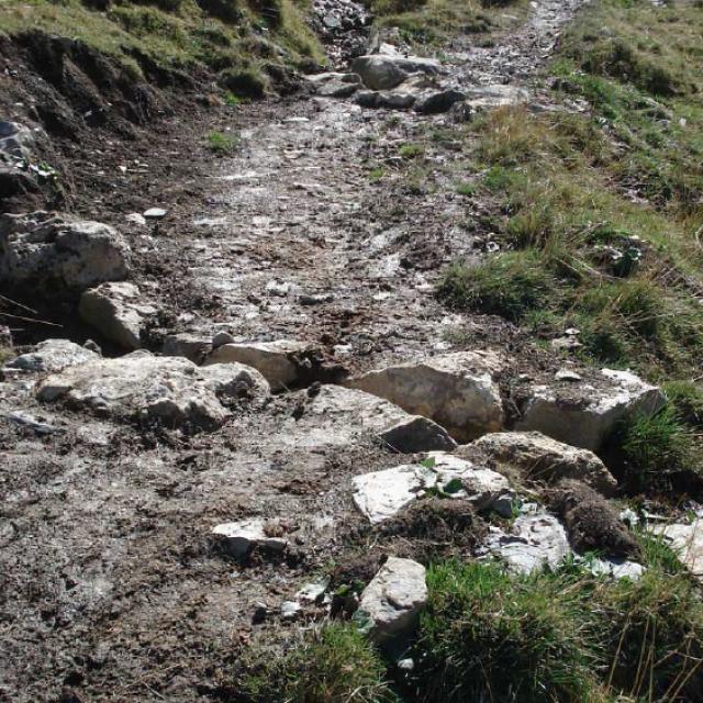 Contrat sentier et zone humide - photo Parc national des Ecrins
