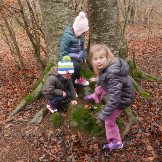 Jeunes découvreurs de la Motte en Champsaur - projet pédagogique avec le Parc national des Ecrins - 2016-2017