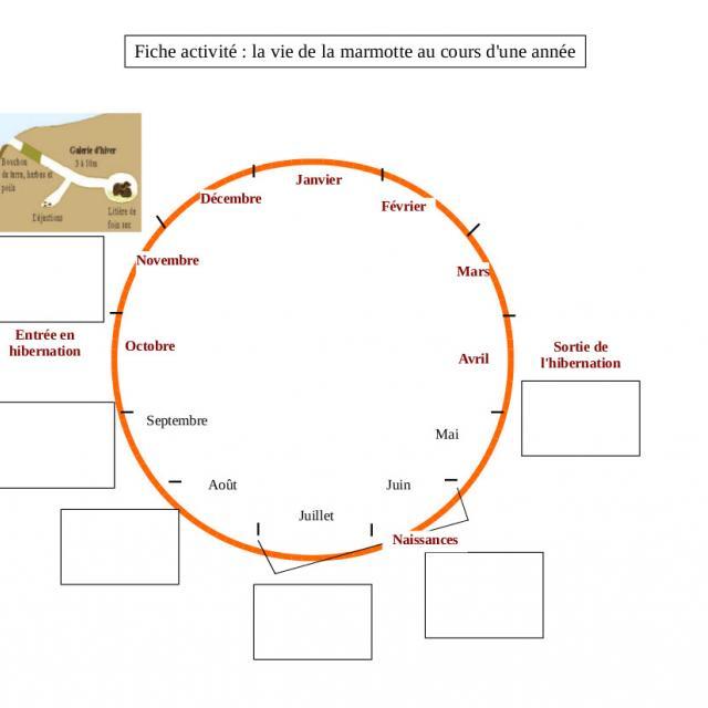 projet pédagogique Freney d'Oisans avec le Parc national des Ecrins - animaux sauvages - 2017-2018
