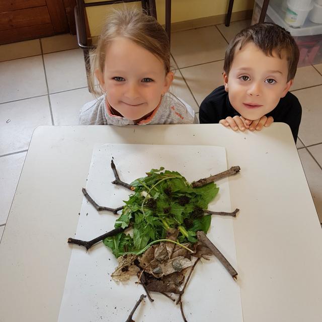 De la larve à la coccinelle - Planète land art  ecole PSV maternelles - 2017/2018 - Parc national des Écrins
