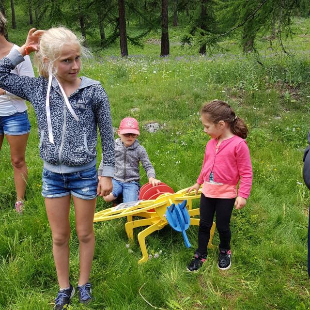relais des insectes - fête de l'école - Planète land art  ecole PSV maternelles - 2017/2018 - Parc national des Écrins