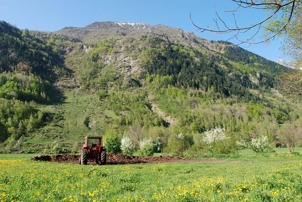 Agriculture sur la commune de La Chapelle en Valgaudemar ©Vincent Dominique - Parc national des Ecrins