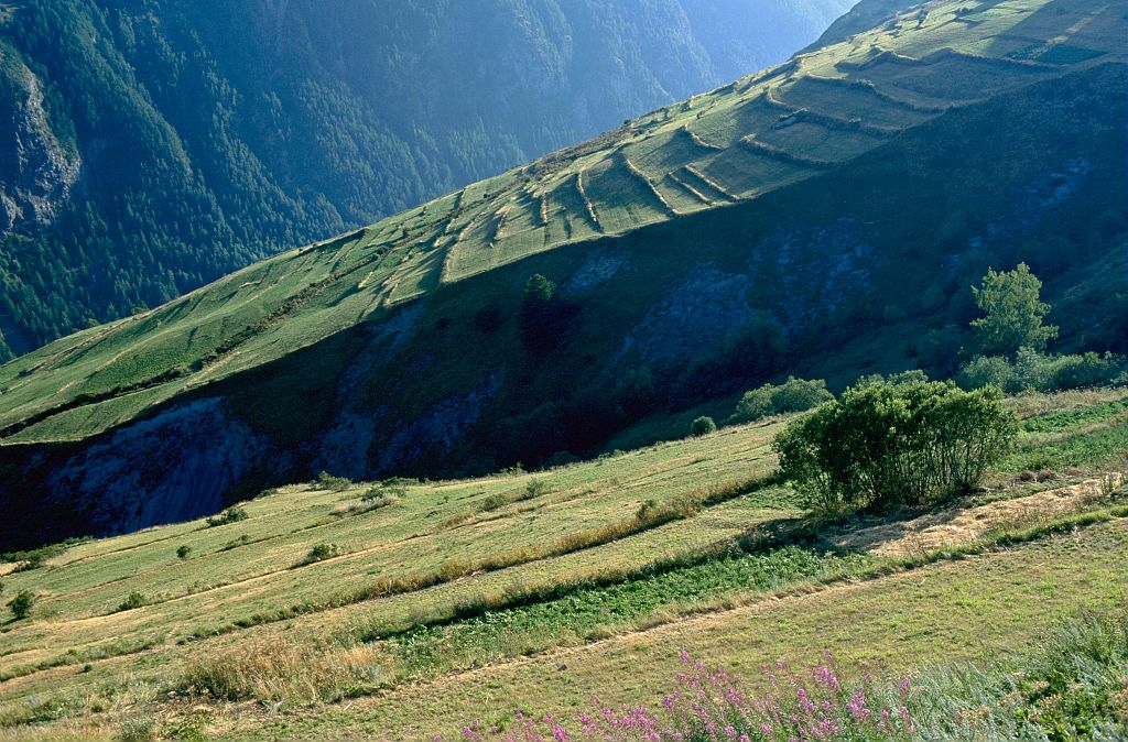 Terrasses agricoles ©Parc National des Ecrins