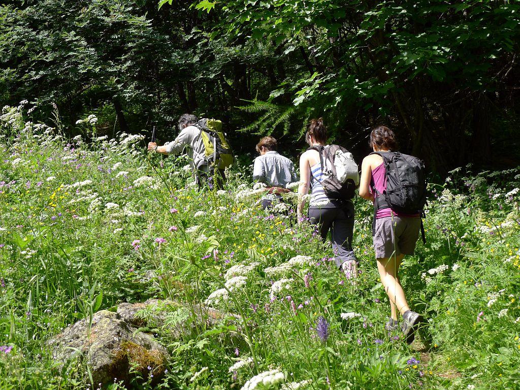 Randonneurs vers Narreyroux - commune de Puy Saint-Vincent ©Thierry Maillet - Parc national des Ecrins